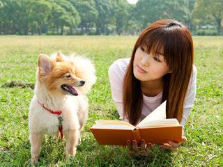 Полезни съвети при осиновяване на куче