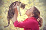 Защо мъжете предпочитат кучета, а жените - котки?