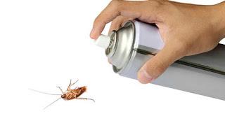 Пръскане срещу хлебарки