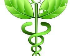 Защо холистичната медицина се превърна в основна алтернатива на конвенционалната