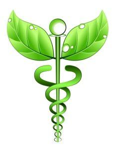 холистична медицина